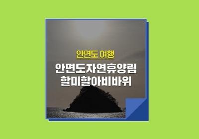[e기자] 안면우체국에서 찾은 명소 :: 안면도자연휴양림 · 할미할아비바위